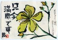 Yoshiko080617