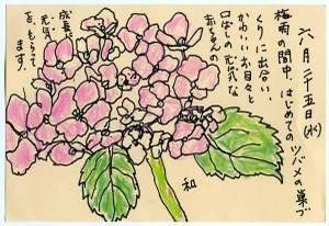 Kazu080628