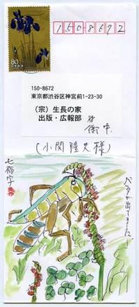 7fuku080628a