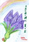 Kazue01