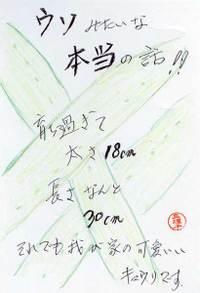 Terumariko090819