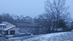 Snow20150408