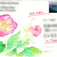 marioさんの絵封筒 3-2