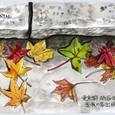 MTさんの絵封筒 ~秋たけなわ