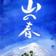kaoru姫さん&チマさんからの絵手紙