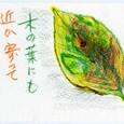 8/24*日曜誌友会の参加者のみなさんの作品-4
