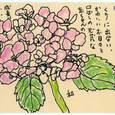 和さんの絵手紙「あじさい」