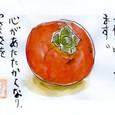 立州さんの「柿」(初投稿)