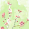 奈良の白鳩さんの絵てがみ ~桃の花