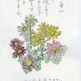 SKの絵手紙 ~小菊